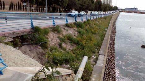 Se acondicionarán las zonas verdes del Barranco de las ovejas