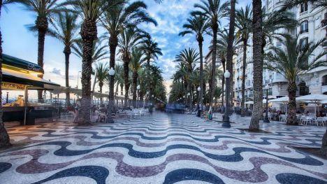 El Ayuntamiento de Alicante duplica las plantaciones del plan de reposición del arbolado