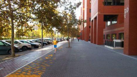 Arrancan las obras del circuito saludable en la Avinguda dels Tarongers en Valencia