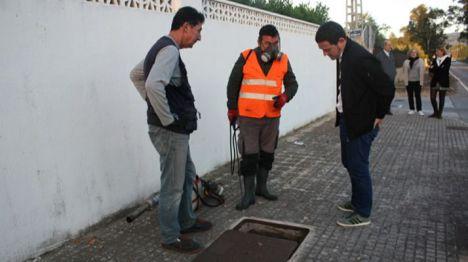 Castelló valora en 200.000 euros la ampliación de los tratamientos antimosquitos