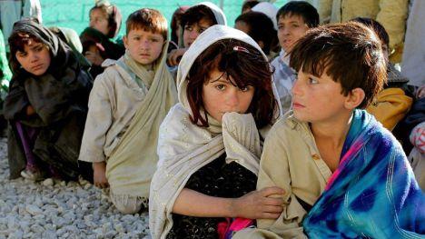 Lecciones Talibán (5)